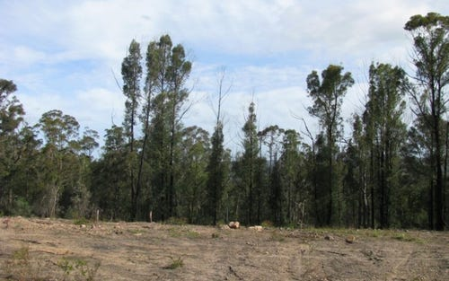 Lot 16, Lot 16 Princes Highway, Pambula NSW 2549