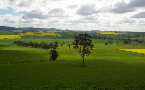 OLD GUNDAGAI ROAD, Cootamundra NSW 2590