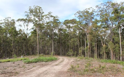 Lot 301 Yellow Pinch Drive, Mirador NSW 2548