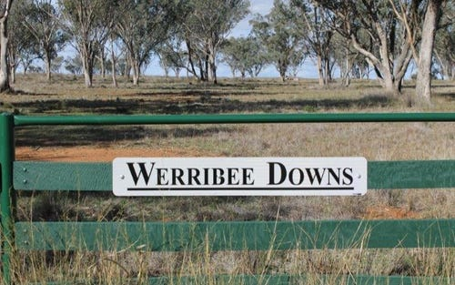 WERRIBEE DOWNS, Tamworth NSW 2340