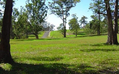 Lot 106 Spring Valley Way, Little Forest NSW 2538