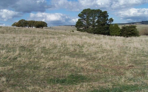 Lot 104 Hill Street, Taralga NSW 2580