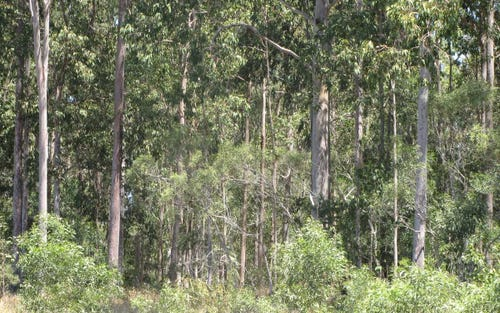 Lot 50 Ermello Road, Ellangowan NSW 2470