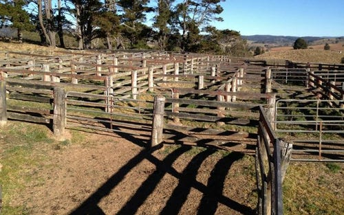 68 Nowendoc Road , Nowendoc Saleyards, Nowendoc NSW 2354