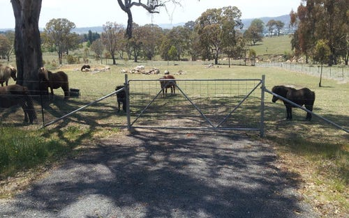 Lot 3 Neagles Lane, Tenterfield NSW 2372