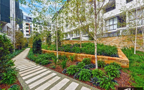 7609/2 Cullen Close, Forest Lodge NSW 2037