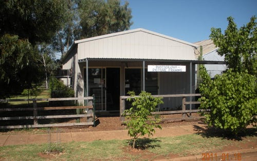87 forbes st, Trundle NSW 2875