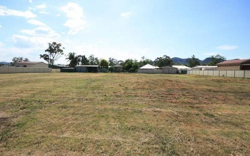 Lot 201 Palace Street, Denman NSW 2328