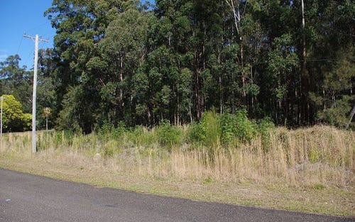 20 Rainforest Drive, Mitchells Island NSW 2430