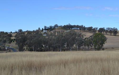 479 Old Bundarra Road, Inverell NSW 2360