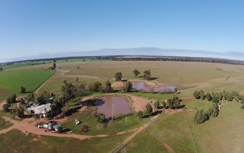 - 'April Hill', West Wyalong NSW 2671
