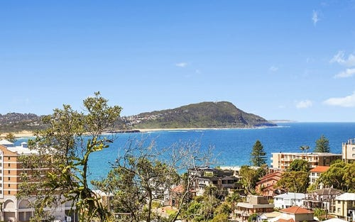 79 Scenic Highway, Terrigal NSW 2260