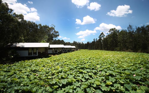 Address available on request, Lovedale NSW 2325