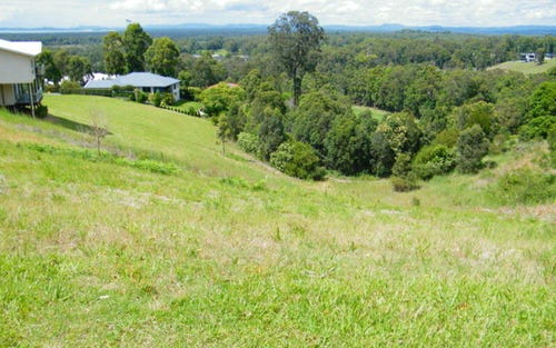 Lot 1005, 553 Tallwoods Drive, Tallwoods Village NSW 2430
