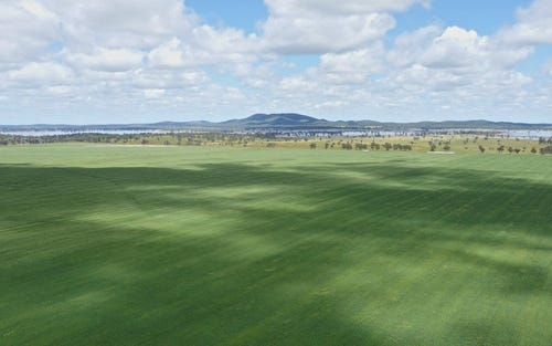 Burratoo Driftway Rd, Forbes NSW 2871
