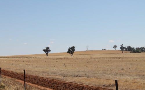 - 'GARS', Coolamon NSW 2701