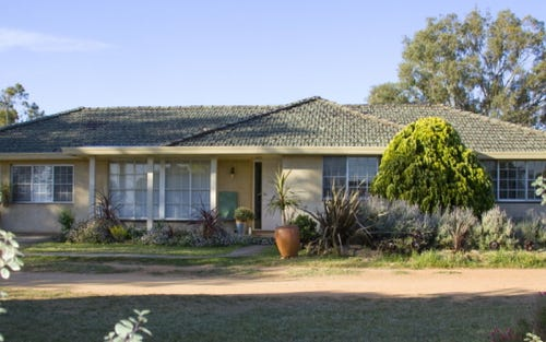685 Olympic Highway North, Young NSW 2594