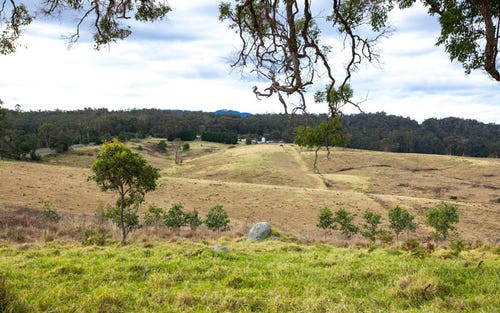 3, 9859 Princes Highway, Cobargo NSW 2550