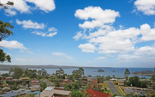 84 Vista Avenue, Catalina NSW 2536