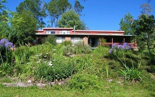 341 Moonpar Rd, Bostobrick via, Dorrigo NSW 2453