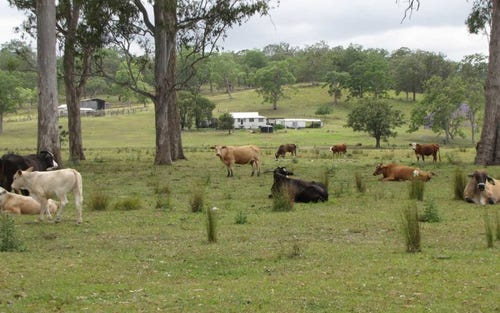 Hiscocks Rd, Mummulgum NSW 2469