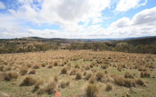 Lot 2 Tom Groggin Road, Nimmitabel NSW 2631