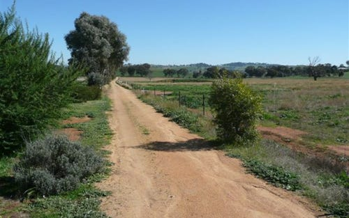 292 CAMP ROAD, Cowra NSW 2794
