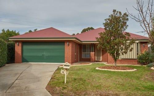 14 Delvin Place, Kooringal NSW 2650