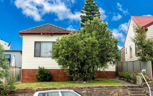 113 Woodstock Street, Mayfield NSW 2304