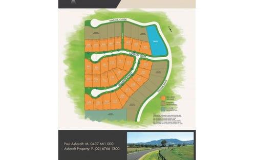 Lot 317 Bellbird Street, Lampada Estate, Tamworth NSW 2340