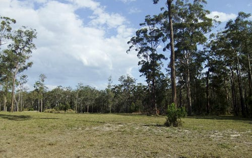 Lot 55 Wonga Court, Gulmarrad NSW 2463