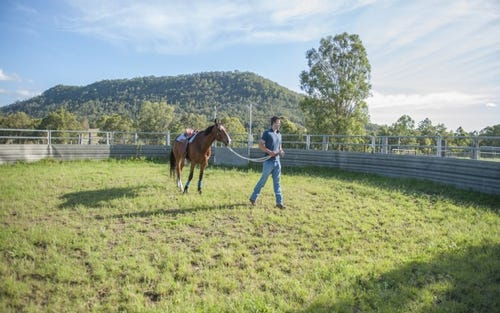 1465 Gresford Road, Vacy NSW 2421