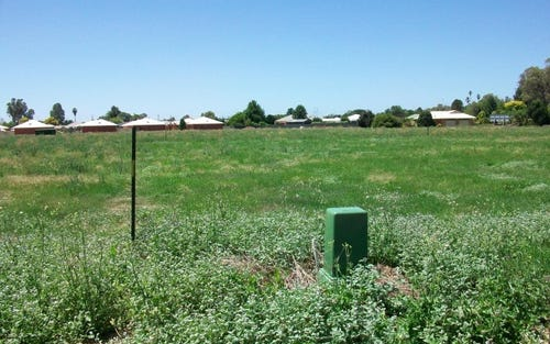 Lot 112, Teddy's Lane, Barham NSW 2732