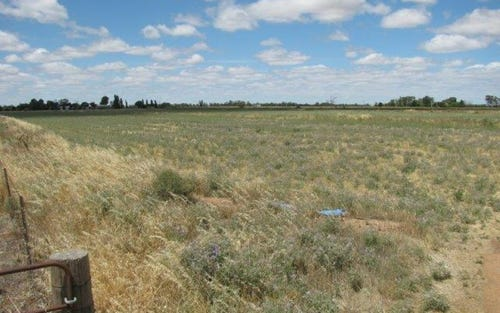 Lot 151, Farm 406 Saunderson Road, Leeton NSW 2705