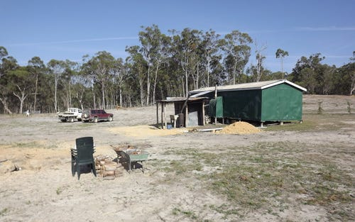 WONGA, 2778 TEN MILE RD, Deepwater NSW 2371
