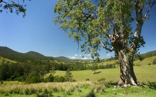Lot 1514 Chichester Road, Dungog NSW 2420