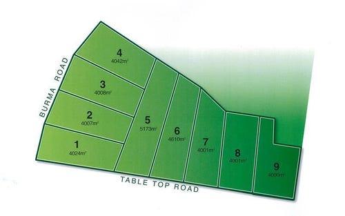 561 Burma Road, Table Top NSW 2640