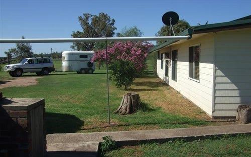 43 Nicholsons Lagoon Road, Quirindi NSW 2343