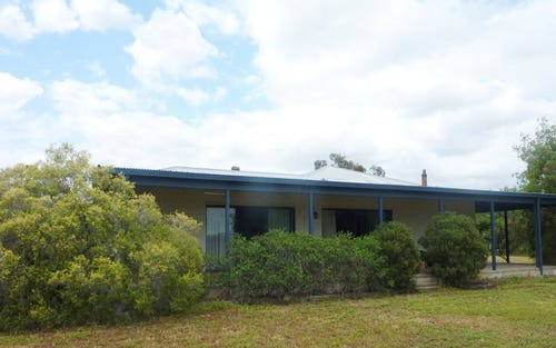 3788 Castlereagh Highway, Armatree NSW 2828