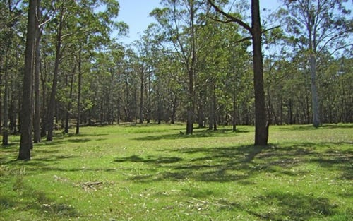 Lot 102 Little Forest Road, Milton NSW 2538