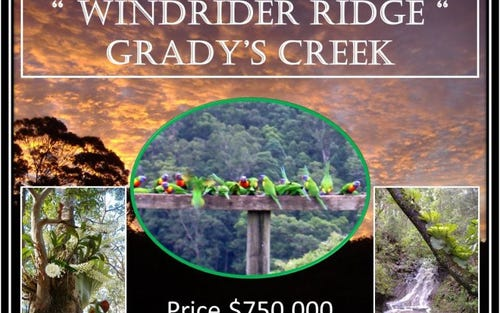 1477 Gradys Creek Road, Kyogle NSW 2474