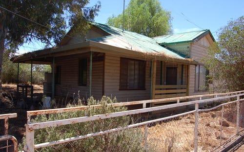 1 Cargelligo Street, Tullibigeal NSW 2669
