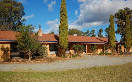 958 Irrigation Way, Narrandera NSW 2700