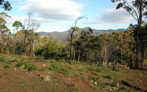 Lot 244 Florabunda Lane, Nethercote NSW 2549