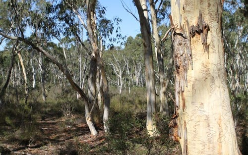 Corner Tamar & Bumballa St, Tallong NSW 2579