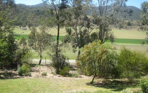 319 Gaol Creek Road, Moonbi NSW 2353
