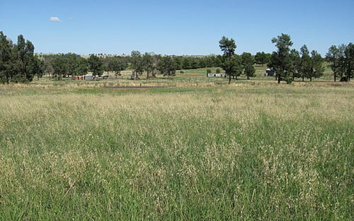 Lot 1 Cons Lane, Parkes NSW 2870