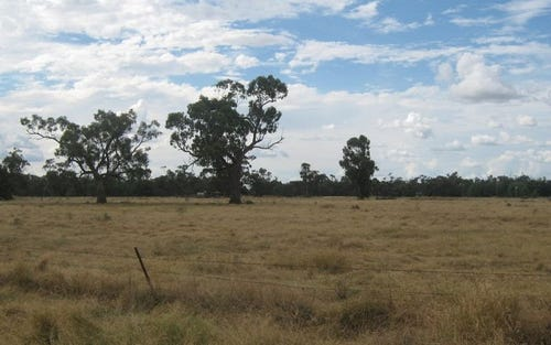 Lot 3, Lot 3 Gregory Street, Nyngan NSW 2825