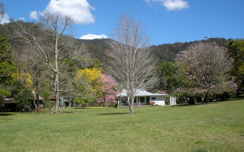 2240 Darkwood Road, Thora, Bellingen NSW 2454
