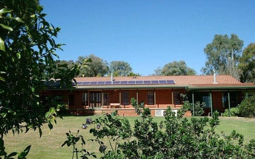 229 Convent Lane, Orange NSW 2800